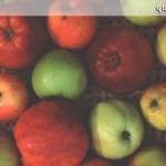 varieties _header